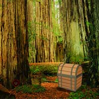 Eco Forest Escape