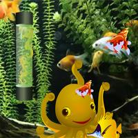 Flower Horn Fish Escape
