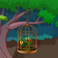 Rescue Adventure Bird From Cage
