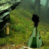 Rock Lush Forest Escape